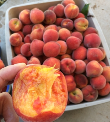 peaches for you